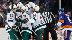 Minnesota Wild win
