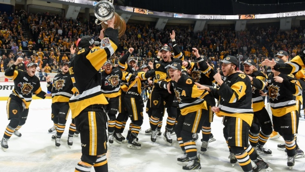 Aurora's Robert Thomas helps Hamilton Bulldogs put chomp on OHL title