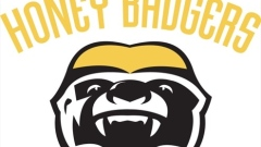 Hamilton Honey Badgers logo