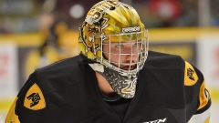 Bulldogs goalie Nick Donofrio (Image courtesy: Hamilton Bulldogs)