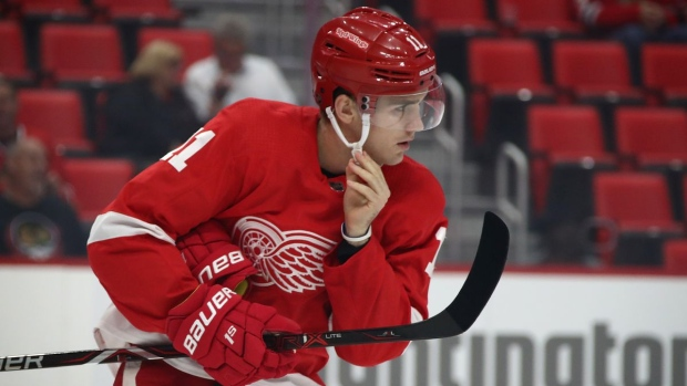 Red Wings summon top prospect Zadina from AHL