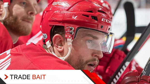 Trade Bait  Leafs interested in Red Wings  Glendening again - TSN.ca d1c993008