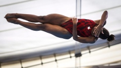Abel begins diving season on brink of record for most worlds medals Article Image 0