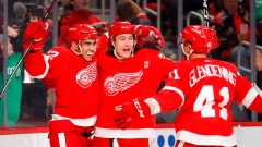 Andreas Athanasiou scores 2, Red Wings beat Islanders 2-1 Article Image 0