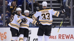 Boston Bruins celebrate goal