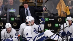 Mike Babcock and Leafs bench