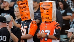 "Winless Bengals hope to avoid ""horror show"" vs Steelers Article Image 1"