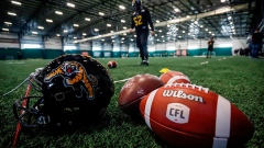 Grey Cup at a glance: Breaking down the Ticats-Blue Bombers showdown Article Image 0