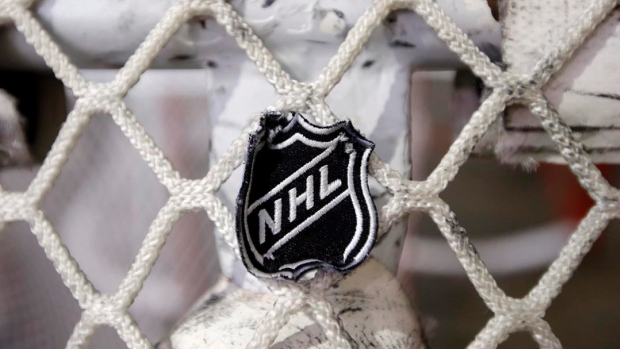 NHL Logo in Hockey Net