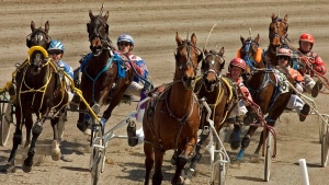 Harness racing set to resume at Woodbine Mohawk Park as COVID restrictions eased
