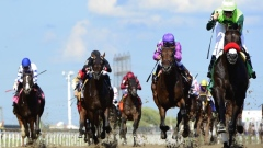 Lawson: Woodbine Racetrack looking to restart horse racing next month Article Image 0