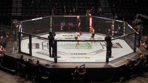 Nevada State Athletic Commission votes not to discipline fighters for marijuana use