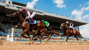 Supreme Court won't hear appeal from horse owners over Canadian Derby dispute