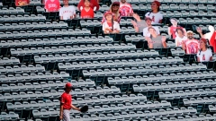 Stray souvenirs: Without fans, MLB foul balls left lonely Article Image 0