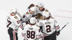 Chicago Blackhawks Celebrate