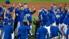 Toronto Blue Jays celebrate playoff berth