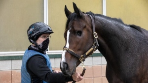 Mighty Heart draws No. 8 post for Breeders' Stakes