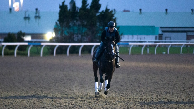 Mighty Heart the mighty favourite in Breeders' Stakes