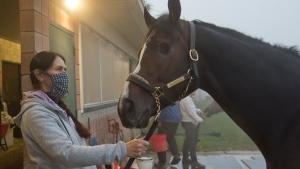 One-eyed colt looking to end 17-year Canadian Triple Crown drought