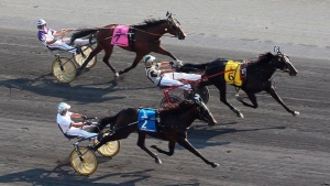 Woodbine Entertainment reschedules Pepsi North America Cup harness race to September