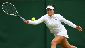 Andreescu, Fernandez out at Wimbledon