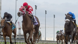 Trainer: Oaks winner Munnyfor Ro being pointed to Queen's Plate
