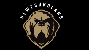 City of St. John's suspends Growlers' home games, pending investigation