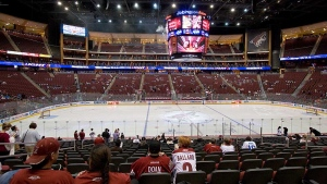 Coyotes attendance