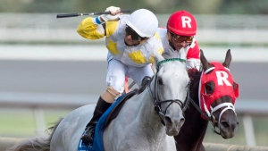 2021 Horse Racing Broadcast Schedule