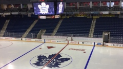 Maple Leafs at the Meridian Centre (Image via Jim Tatti)