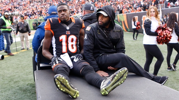 Giovani Bernard Tore His ACL, Marvin Lewis Facing Long Odds in Cincinnati