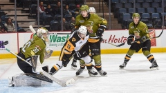Hamilton Bulldogs vs. North Bay Battalion