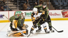 Hamilton Bulldogs vs Kingston Frontenacs