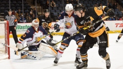 Hamilton Bulldogs vs. Barrie Colts