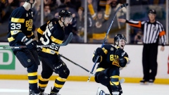 David Pastrnak and Boston Bruins celebrate goal