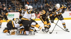 Hamilton Bulldogs vs. Kingston Frontenacs