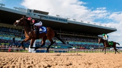 Holy Helan easily captures $1-million Queen's Plate at Woodbine Racetrack Article Image 0