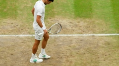 Djokovic says Wimbledon courts 'not that great' this year Article Image 0
