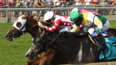 Channel Maker wins Breeders' Stakes