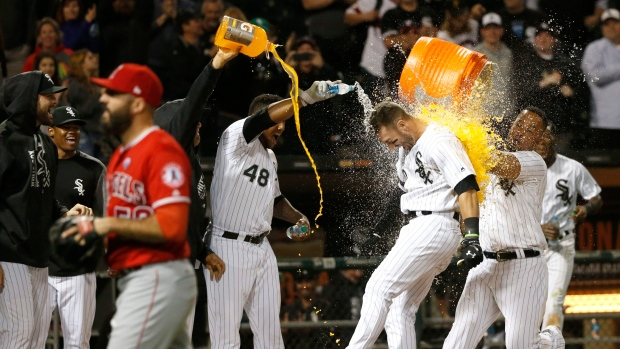 Chicago White Sox celebrate