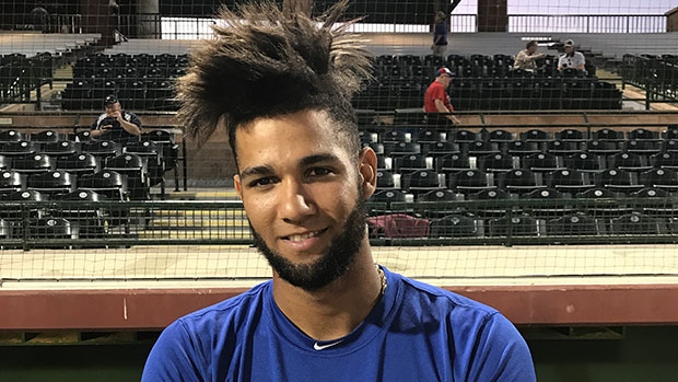 Gurriel Jr. rode highs, lows of brother\u0027s World Series chase